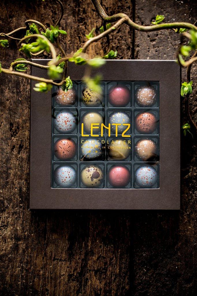 Lentz-RAISFOTO-1578.jpg